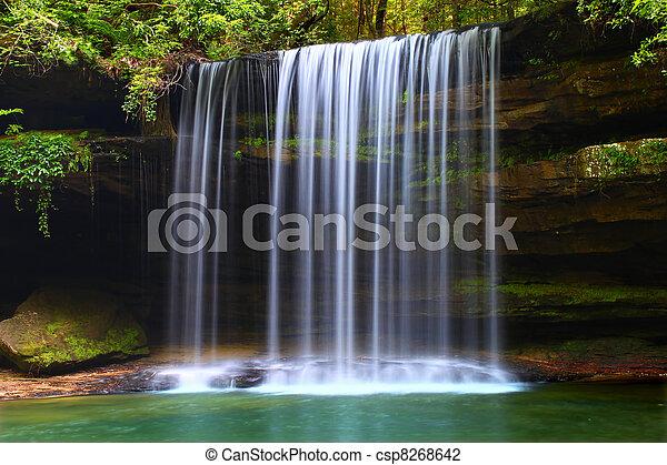 Upper Caney Creek Falls - csp8268642