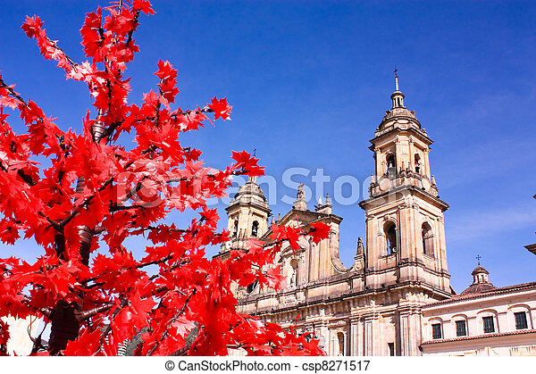 Cathedral of Bogota, Colombia - csp8271517