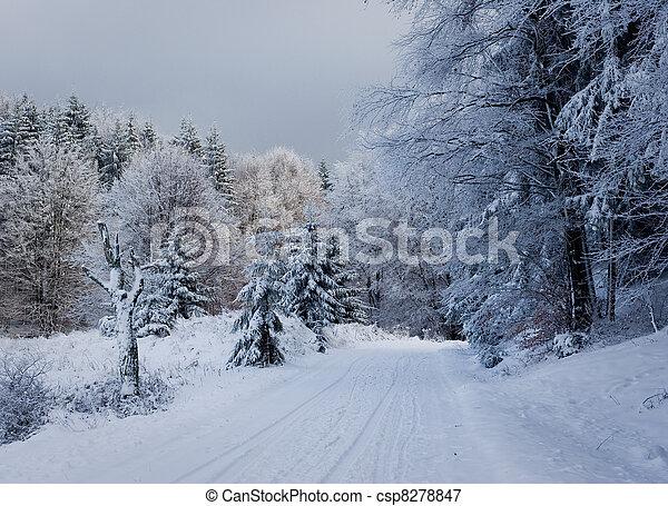 bilder von sch ne landschaftsbild winter sch ne schnee bedeckt csp8278847 suchen sie. Black Bedroom Furniture Sets. Home Design Ideas