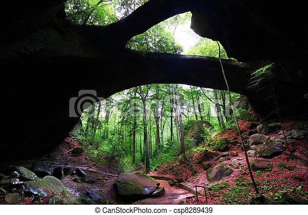 Alabama Natural Rock Bridge - csp8289439