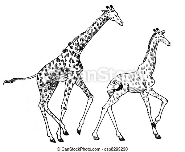 giraffe drawing outline