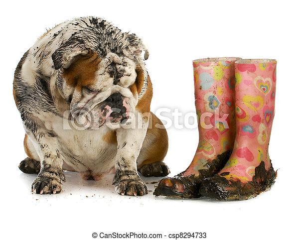 dirty dog - csp8294733