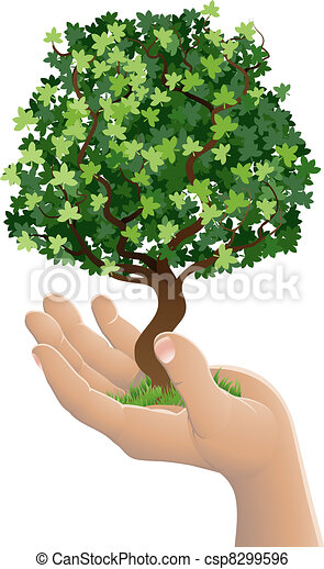 Hand holding a growing tree - csp8299596