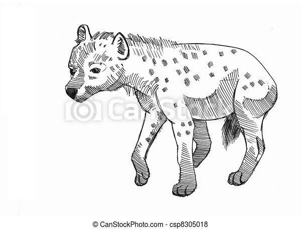 Stock de Ilustraciones de hiena, el cowering - tinta, dibujo ...