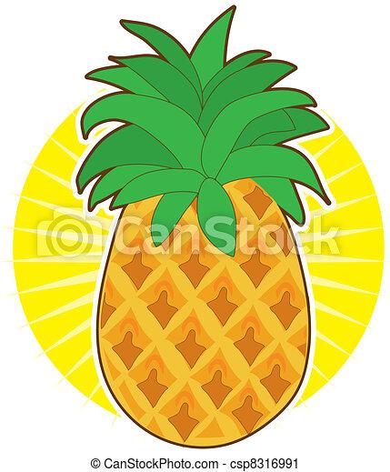 Pineapple Sun - csp8316991