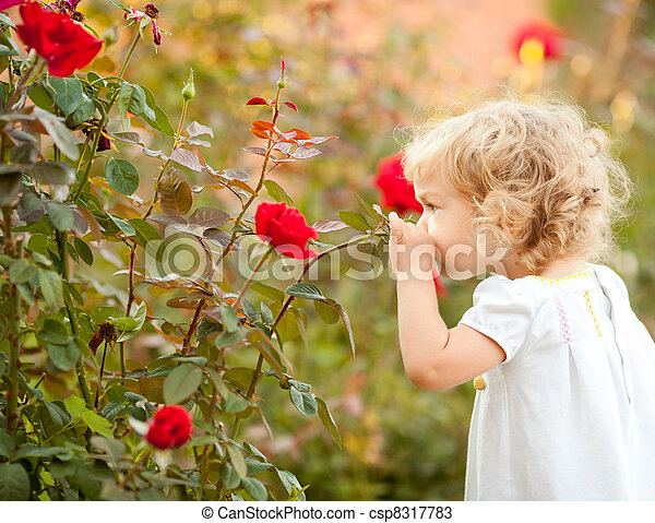Beautiful child smelling rose - csp8317783