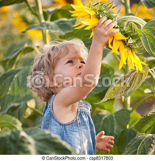 Beautiful child with sunflower - csp8317803