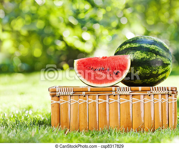 Juicy slice of watermelon on picnic hamper  - csp8317829