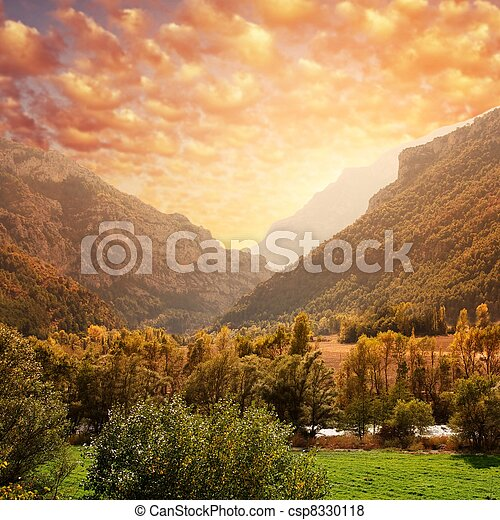 Beautiful mountain forest landscape against sky. - csp8330118
