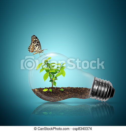 Bulb light with tree inside - csp8340374