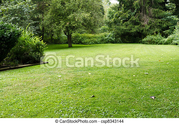 Quiet lawn with trees - csp8343144