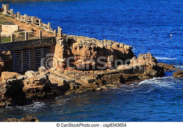 Beautiful small bay in Ibiza, Baleares Island, Spain. - csp8343654