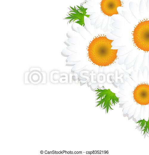 Camomile With Leaf - csp8352196