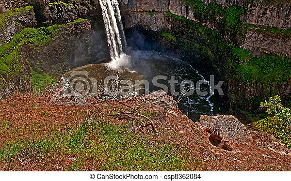 Palouse Falls Washington Waterfalls With Marmot in Foreground - csp8362084