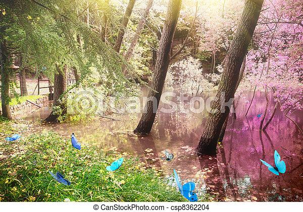 Magic forest - csp8362204