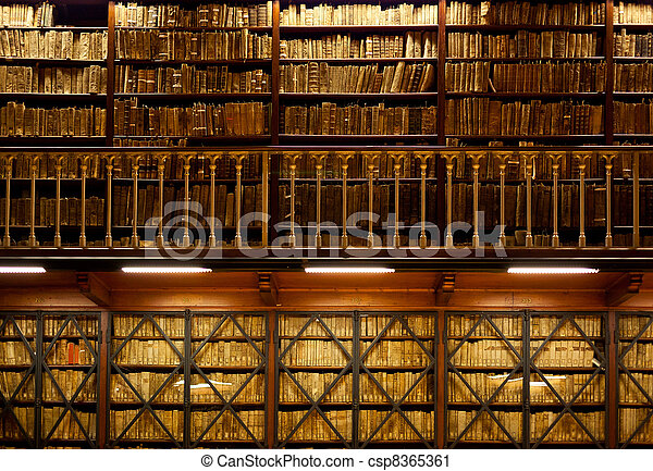 Book shelves in library  - csp8365361