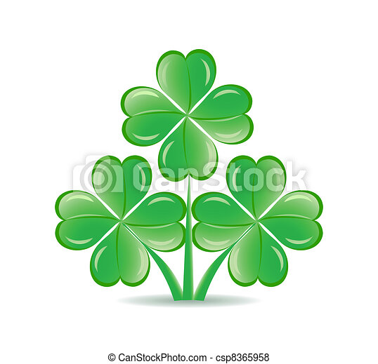 vector illustration of the three  shamrocks with four lucky leaves isolated on white background.  St. Patrick's day theme - csp8365958