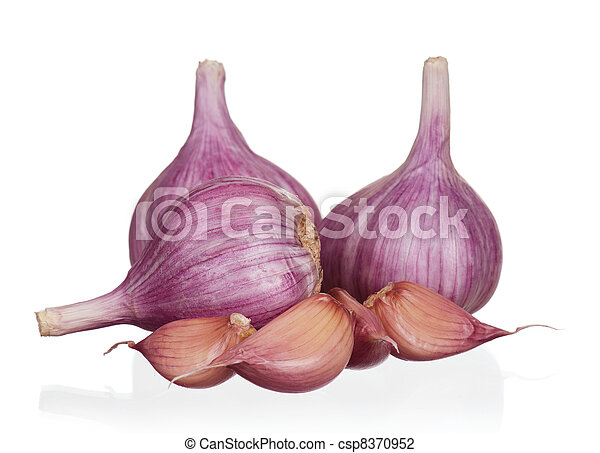 Fresh garlic - csp8370952