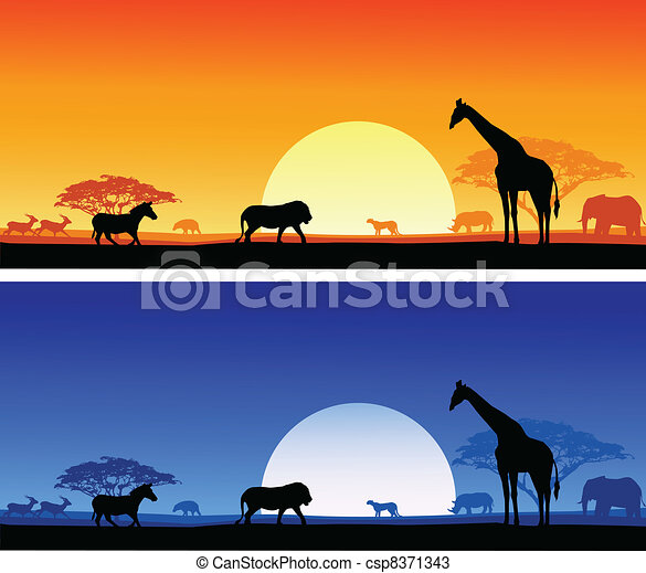 Safari background - csp8371343