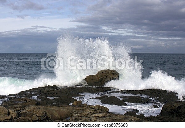 Waves on the coast with force