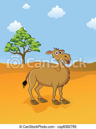 camel in the savanna - csp8382785