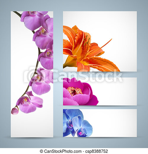 Vector flowers, orchid, lily and peony blossom - csp8388752