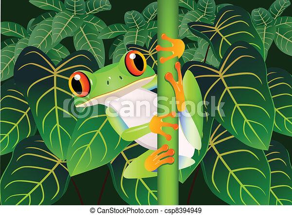 Beautiful frog - csp8394949