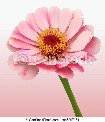 Flower Bloom Background - csp8397151