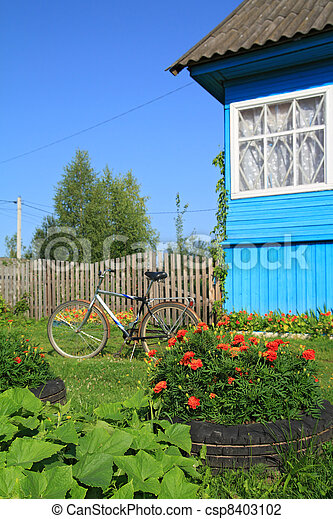 summer flowerses near rural building - csp8403102