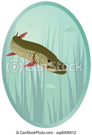 River predator - csp8406512