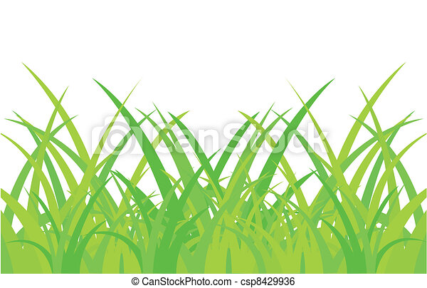 Green herb on white background - csp8429936