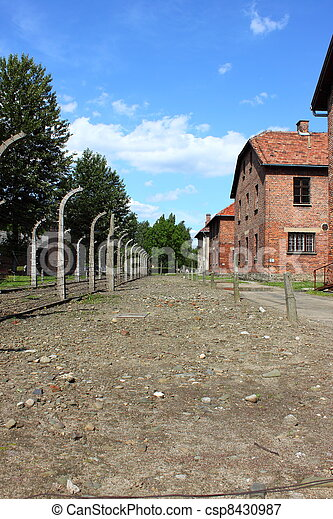 Auschwitz concentration camp - csp8430987