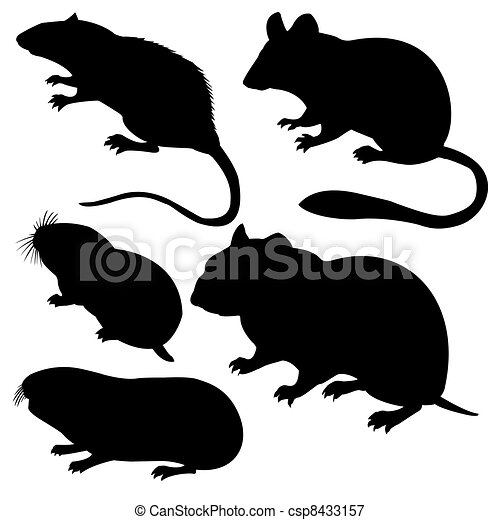 silhouettes rodent on white background - csp8433157
