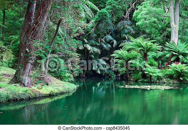 jardim botanic - csp8435045