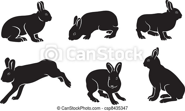 silhouette of hares - csp8435347
