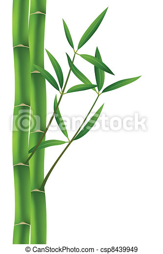 how to stop bamboo from spreading