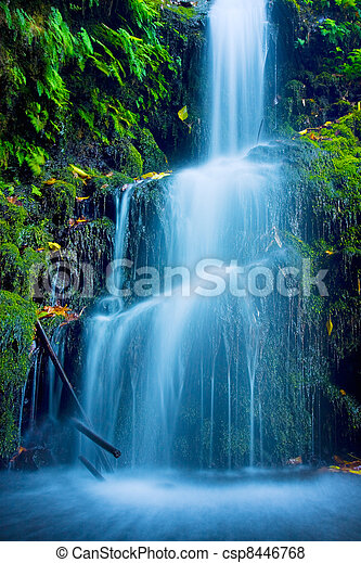 Beautiful Lush Waterfall - csp8446768