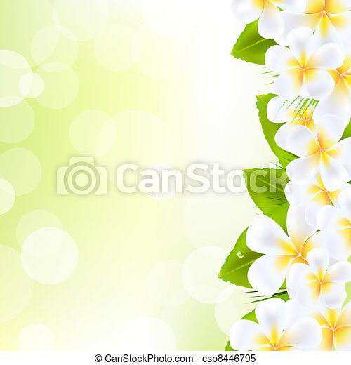Frangipani Flowers With Leaf - csp8446795