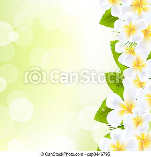Frangipani Flowers With Leaf - csp8446795