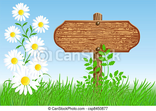 Signboard on the meadow with daisies - csp8450877