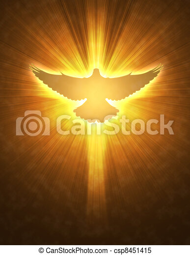 shining dove with rays on a dark  - csp8451415