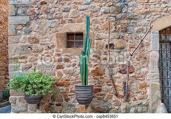 stock fotografie von blumen wand spanien peratallada blumen auf a stein csp8453651. Black Bedroom Furniture Sets. Home Design Ideas