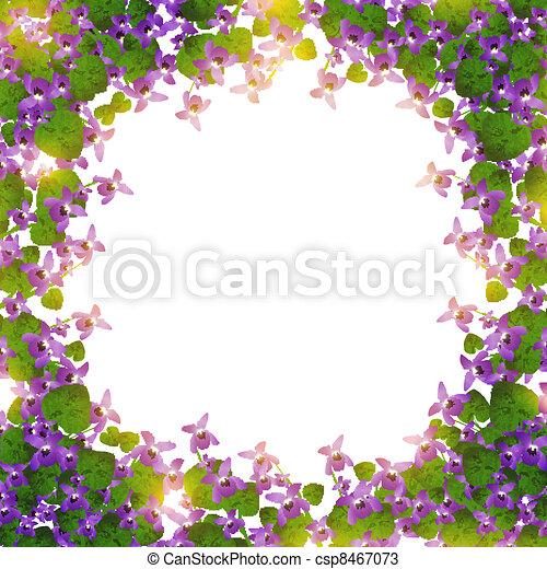 wild violet border - csp8467073