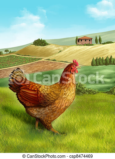 Hen and farm - csp8474469