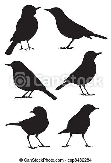 Birds Silhouette - vector - csp8482284