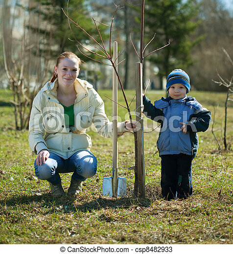 mother and son planting  tree - csp8482933