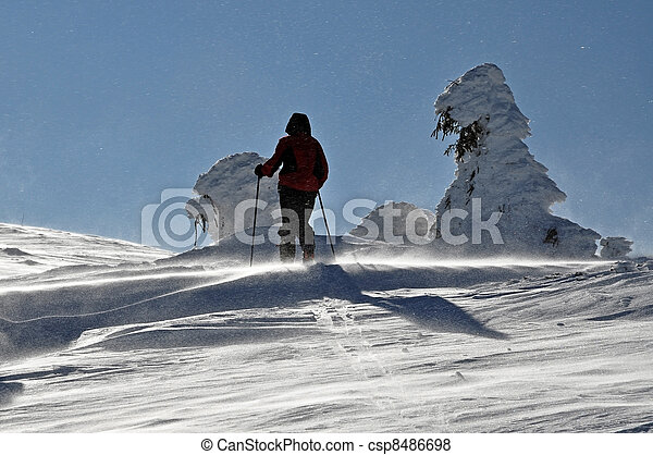 Back-country skier - csp8486698