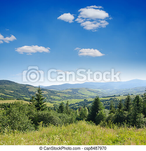 Beautiful green mountain landscape with trees in Carpathians - csp8487970