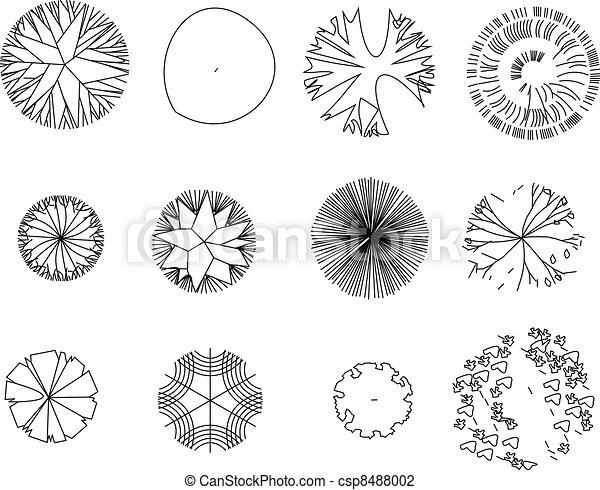 Tree Plan Vector Graphic Tree Vector