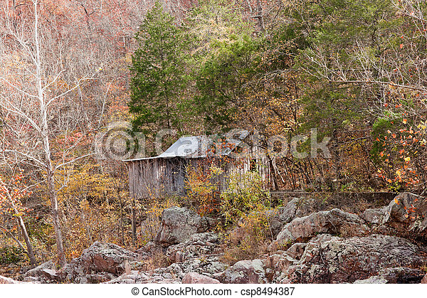 old settlers cain in the forest - csp8494387
